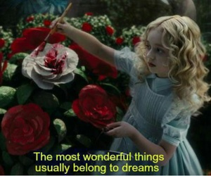 alice in wonderland, quote, and rose image