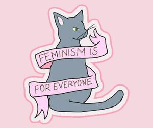 feminism, cat, and feminist image