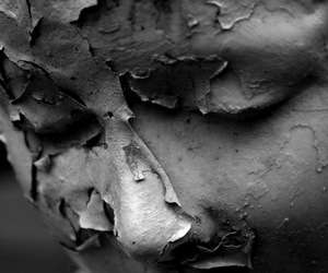decay, head, and face image