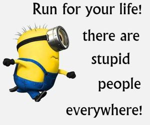 run, stupidpeople, and funnyquotes image