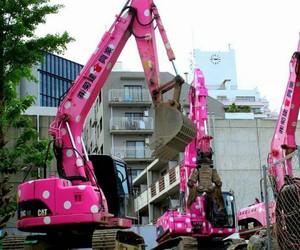cat, crane, and job image