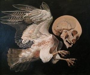 art, dark, and skull image