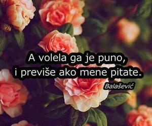 love, balašević, and citati image