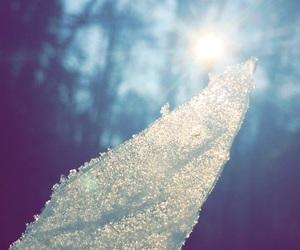 crystal, eis, and ice image
