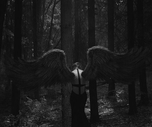 angel, wings, and black image