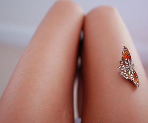 butterfly and legs image