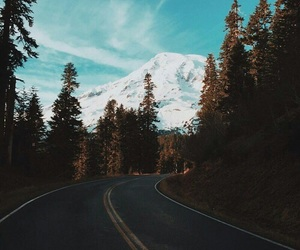 road, travel, and trees image
