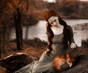 fox, autumn, and red image