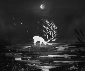 moon, night, and deer image