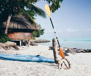 adventure, travel, and tropical image