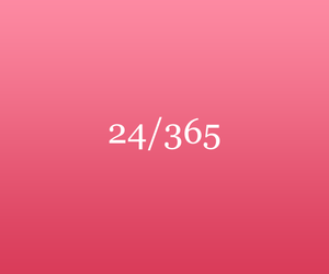 january, 365 days, and 2017 image