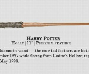 harry potter, hp, and wand image