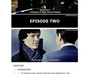 john, otp, and sherlock image