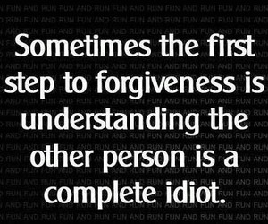 quote, idiot, and forgiveness image
