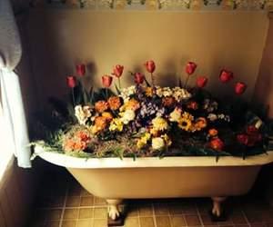 flowers, vintage, and bath image