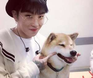dog, taeil, and block b image