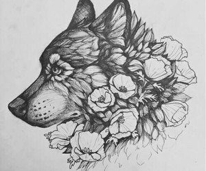 wolf, art, and draw image