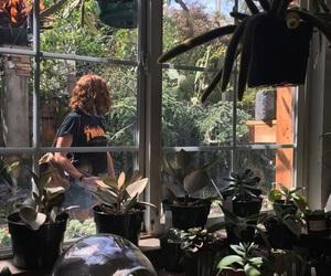 aesthetic, bambi, and plants image