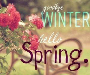 spring, winter, and flowers image
