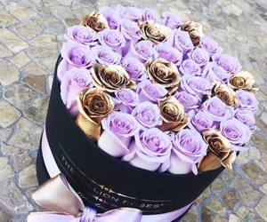 gift and roses image