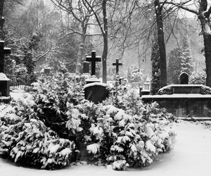 cemetery, cold, and nature image