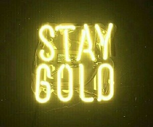 gold - neon image