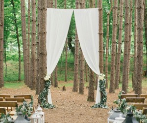 forest and wedding image