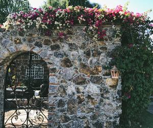 alternative, flowers, and garden image