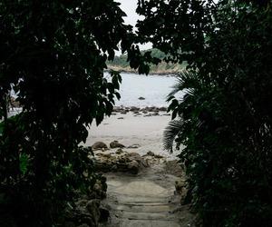 aqua, beach, and greenery image