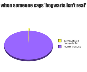harry potter, hogwarts, and muggle image