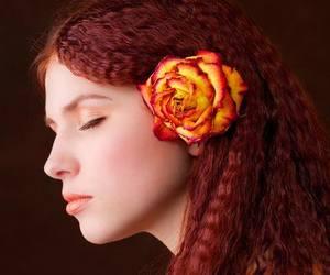 redhead crimp orange rose image