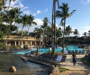 blue, hawaii, and hilton image
