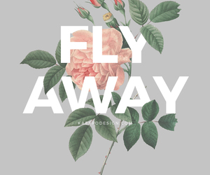 flowers, fly away, and rose image