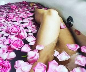 bath, fashion, and rose image