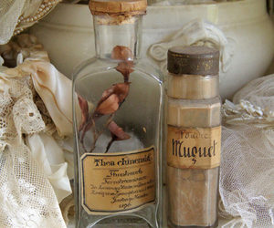 botanical, bottle, and fantasy image