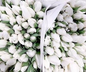 bouquet, flowers, and tulips image