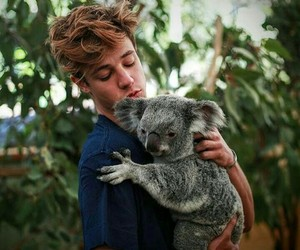 cameron dallas and Koala image