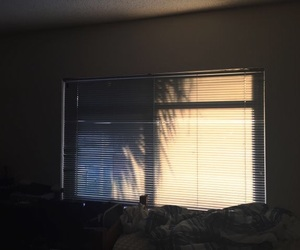 tumblr, light, and window image