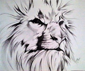 africa, drawing, and lion image