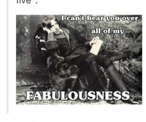 funny, lol, and oscar wilde image