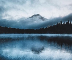 beautiful, forest, and lake image