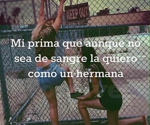 frases and primas image