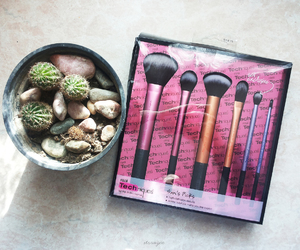 cactus, makeup, and modern image