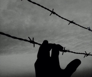 Barbed Wire, black and white, and hand image