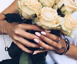flowers, rose, and nails image