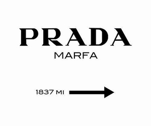 Prada and wallpaper image