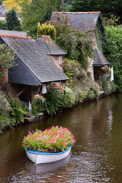 flowers, boat, and france image