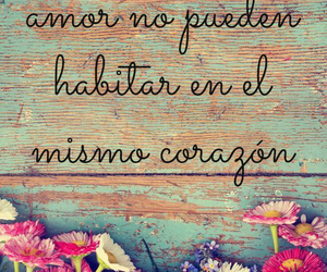 books, frases, and heart image