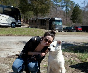 teen wolf, crystal reed, and dog image