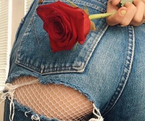rose, jeans, and red image